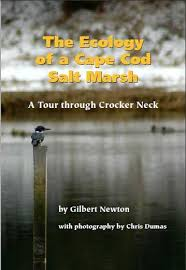 Salt Marsh book