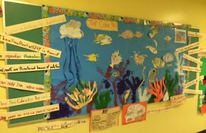 Coral Reef Bulletin Board