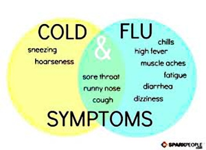 Flu & Colds