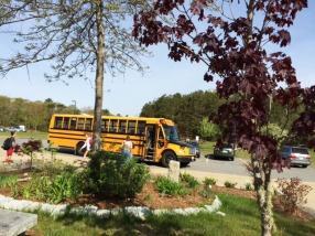 Buses #1