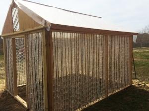 Greenhouse #4