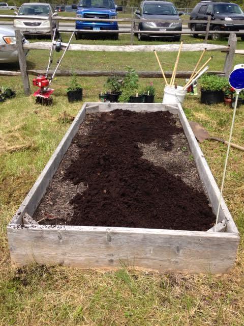 New Garden #6